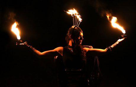 Fire-Palm-Show